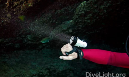 Selecting Handheld Dive Lights