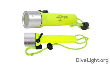 Shallow Water Dive Lights